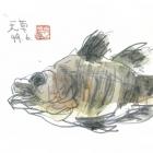 shishido2024