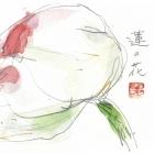 shishido2034