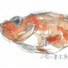 shishido2035