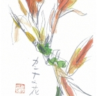 shishido2043